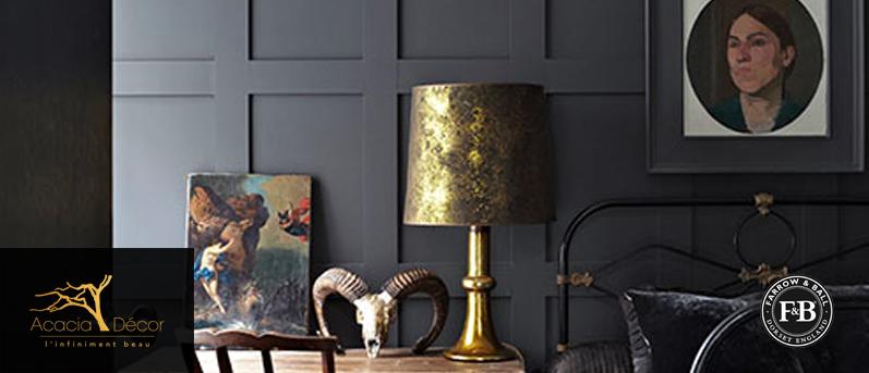 acacia-decor-exclusivite-farrow-ball-catalogue-1
